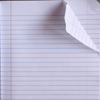 Blank_Pages_In_An_Open_Notebook_(4812269151).jpg