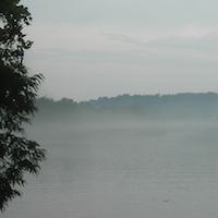 Foggy_Tennessee_River_Scene_Decorated_by_Lone_Tree.JPG