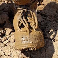 mud-1657722_960_720.jpg