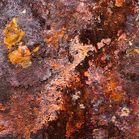 800px-Rust_on_iron.jpg